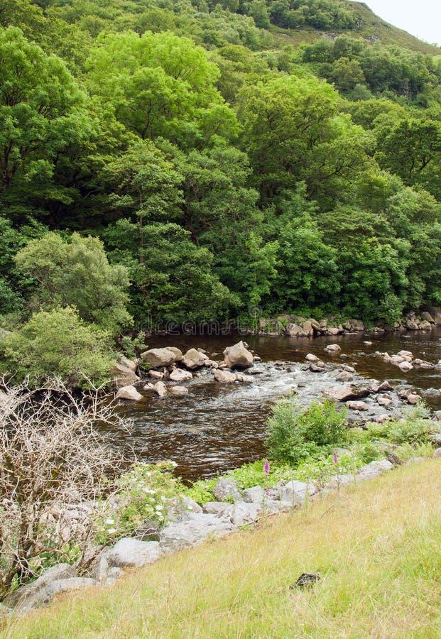 La valle di slancio nel summetime di Galles, Regno Unito immagine stock