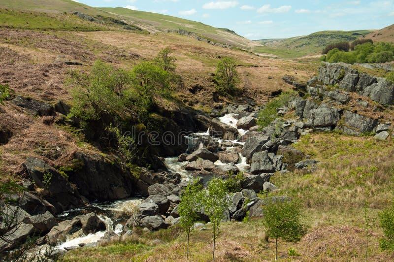 La valle di slancio nell'estate di Galles, Regno Unito immagine stock