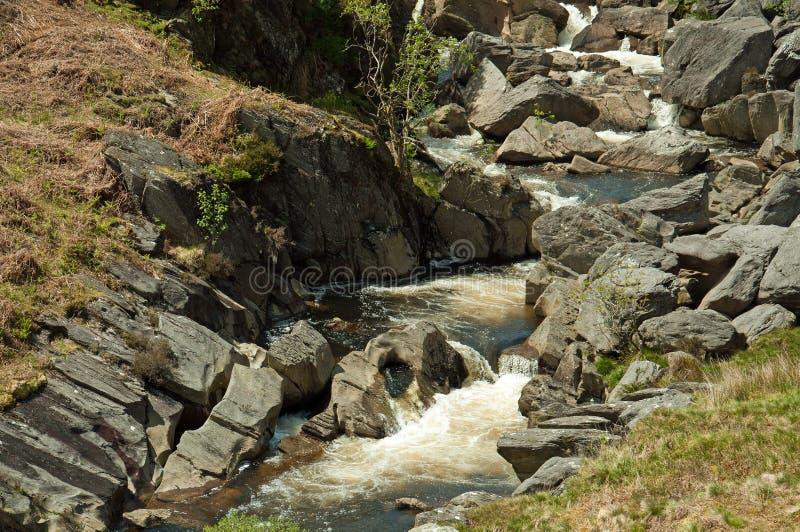 La valle di slancio nell'estate di Galles, Regno Unito fotografie stock libere da diritti