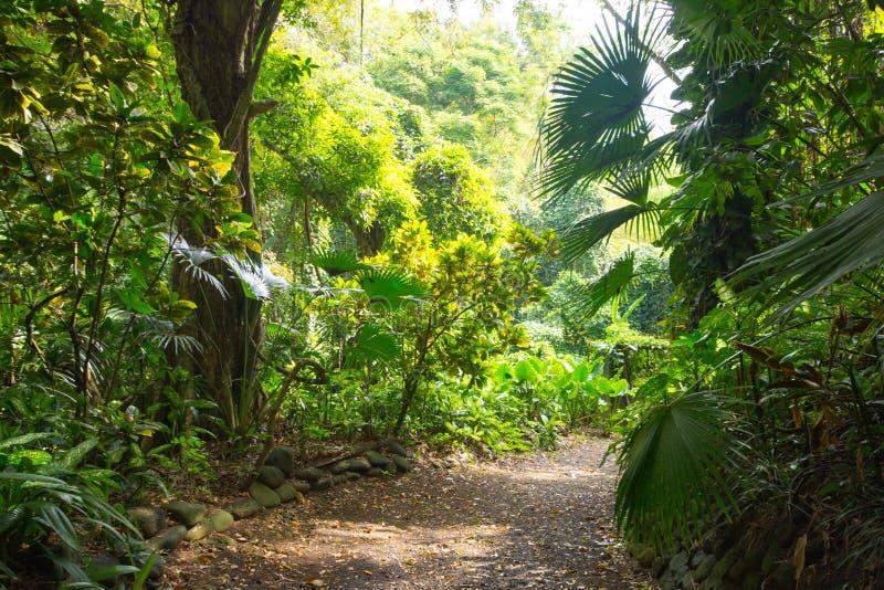 La Vanille Natural Park Mauritius fotos de archivo libres de regalías