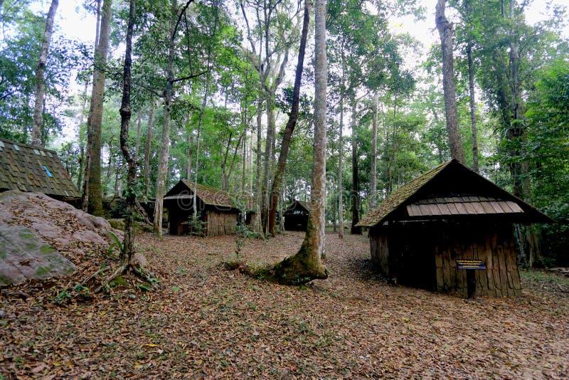 La vecchia casa in foresta fotografia stock libera da diritti