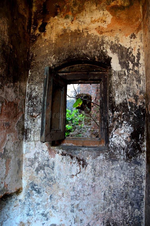 La vecchia costruzione può vedere l'albero verde fotografia stock libera da diritti