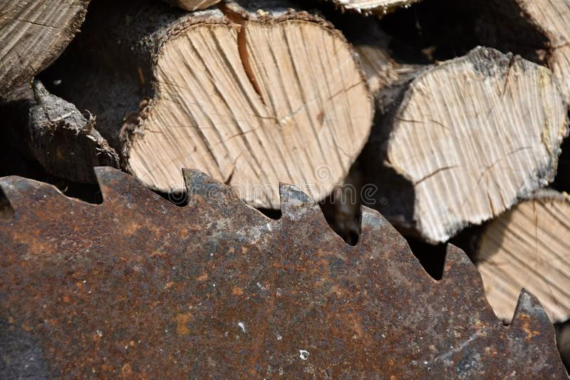 La vecchia lama per sega arrugginita sulla circolare ha visto con legno fotografia stock libera da diritti