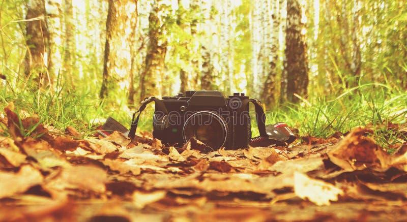 La vecchia macchina fotografica nel legno fotografia stock