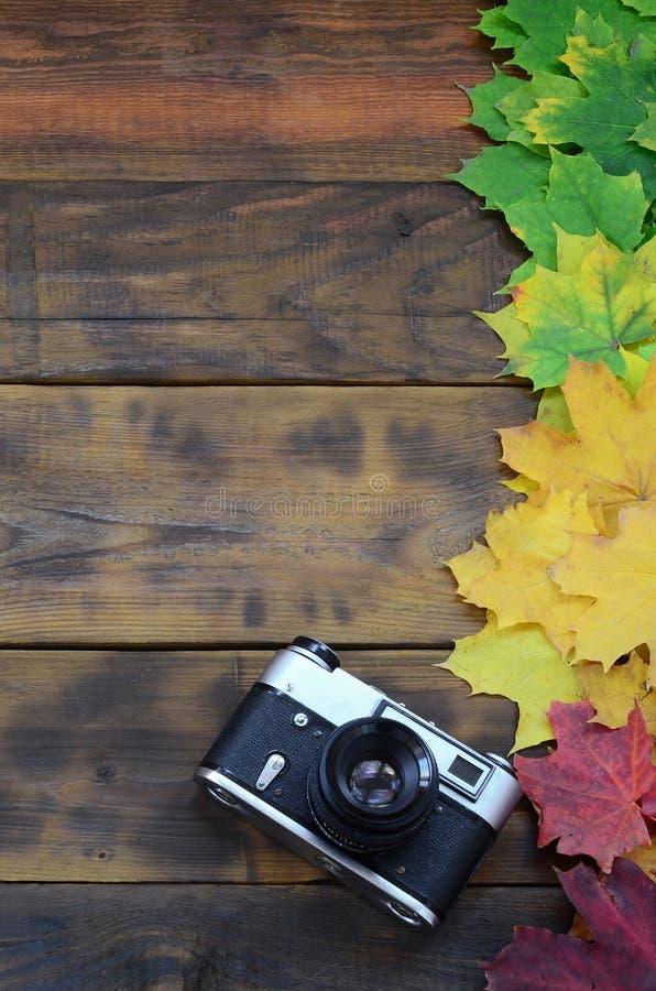 La vecchia macchina fotografica in un insieme di ingiallimento delle foglie di autunno cadute su una superficie del fondo dei bor immagini stock libere da diritti
