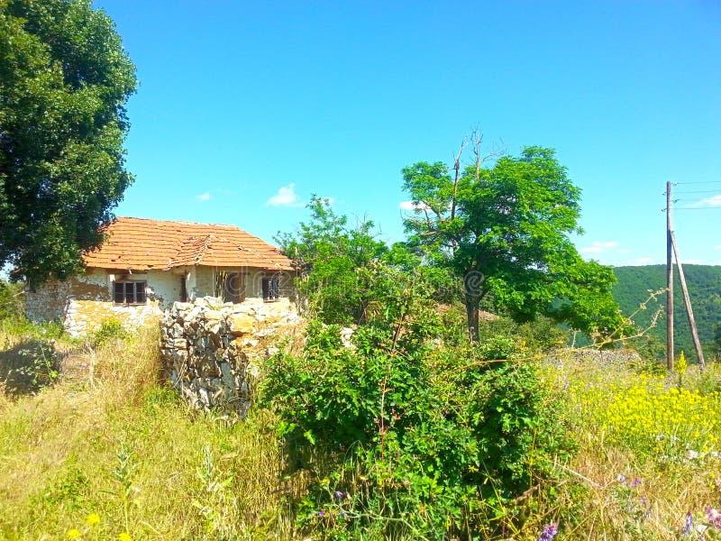 la vecchia natura della casa si appanna l'erba verde della foresta di legni fotografia stock