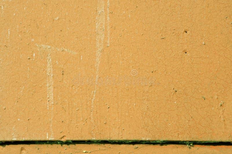 La vecchia parete dipinta di lerciume del colore verde della casa ha tonificato sottragga la priorit? bassa immagini stock