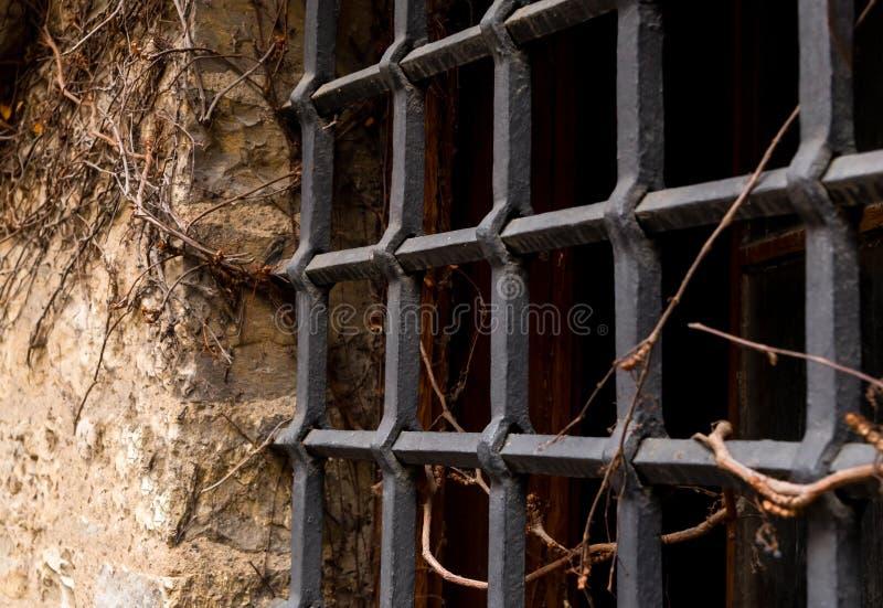 La vecchia parte della parete di pietra del nero di griglia del ferro della cittadella si è intrecciata con la vite asciutta dell fotografie stock