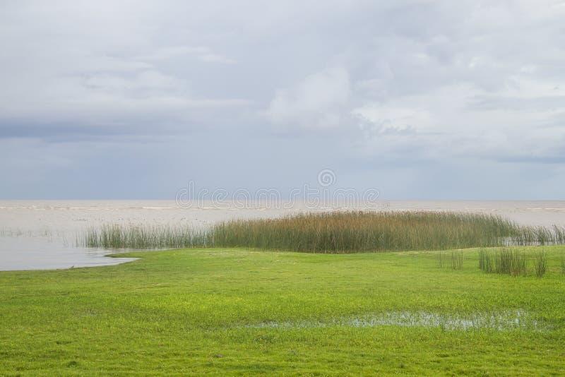 La vegetación en Lagoa hace el lago Patos fotografía de archivo libre de regalías