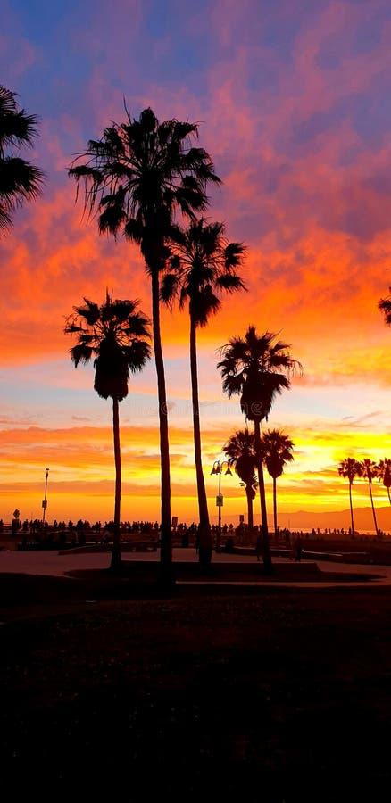 LA VENICE SUNSET. Los, anfeles, nature, america royalty free stock photos