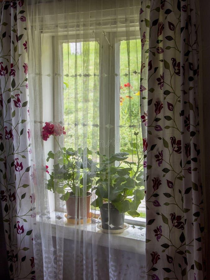 La ventana casera florece la decoración fotografía de archivo