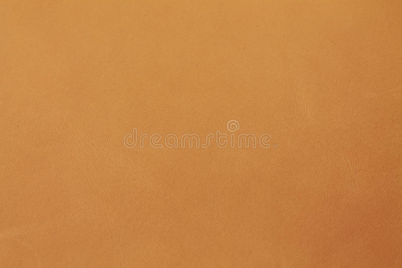 La verdura natural del coñac del camello de Brown bronceó la textura de cuero del fondo fotografía de archivo libre de regalías
