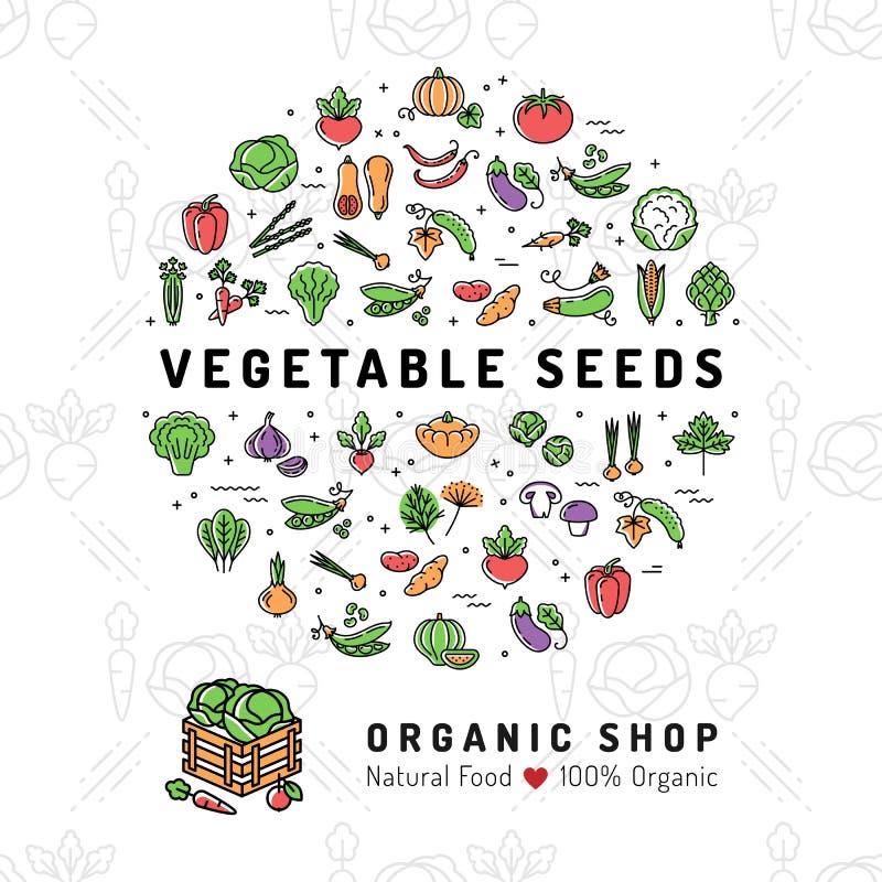 La verdura siembra la comida orgánica del vegetariano de la tarjeta del producto natural de la tienda de la bandera stock de ilustración