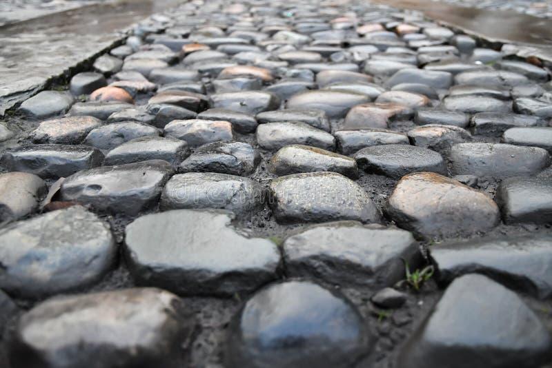 La via bagnata di coblestone sceen immagini stock