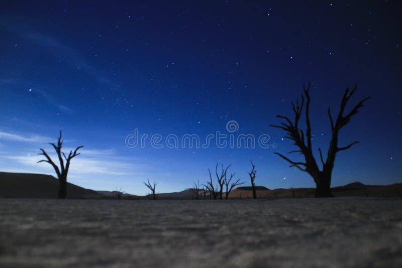 La Via Lattea ed il cielo notturno sopra il deserto di Namib, parco di Sosusfleu immagine stock