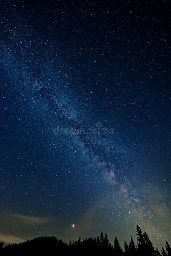 La Via Lattea variopinta con guasta e la siluetta dell'albero nelle alpi austriache nell'inverno fotografia stock libera da diritti