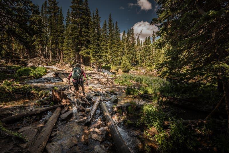La viandante attraversa una corrente vicino a Mitchell Lake Colorado fotografia stock libera da diritti