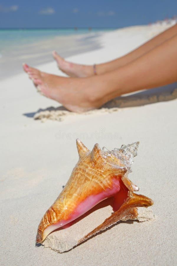 La vida es una playa (la orilla) fotos de archivo libres de regalías