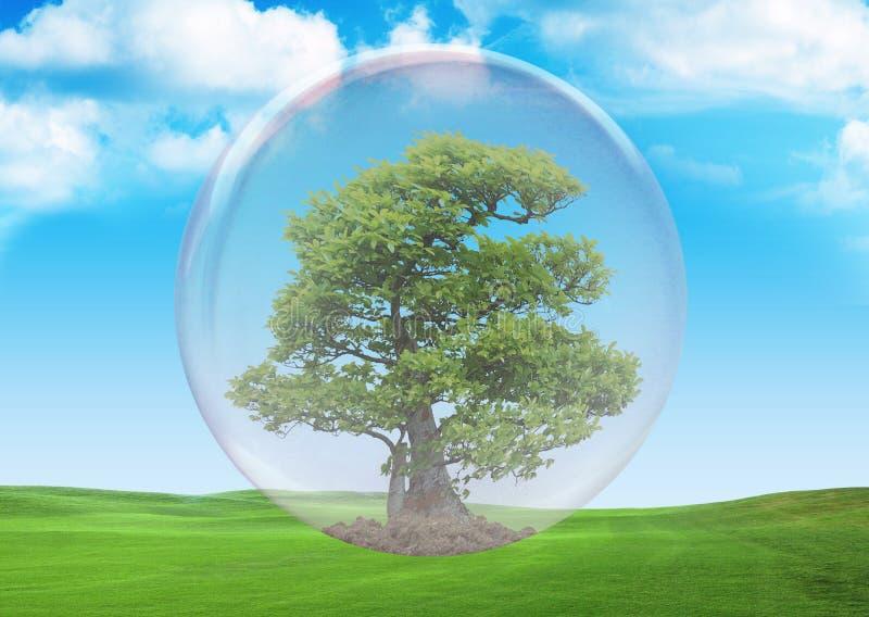 La vida verde 2 foto de archivo libre de regalías