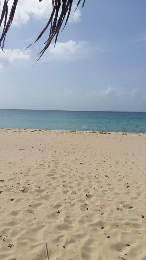 La vie d'île images stock