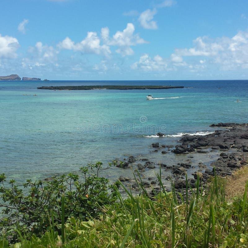 La vie d'Oahu photo stock