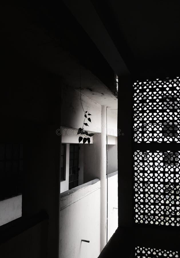 La vie dans l'obscurit? images libres de droits