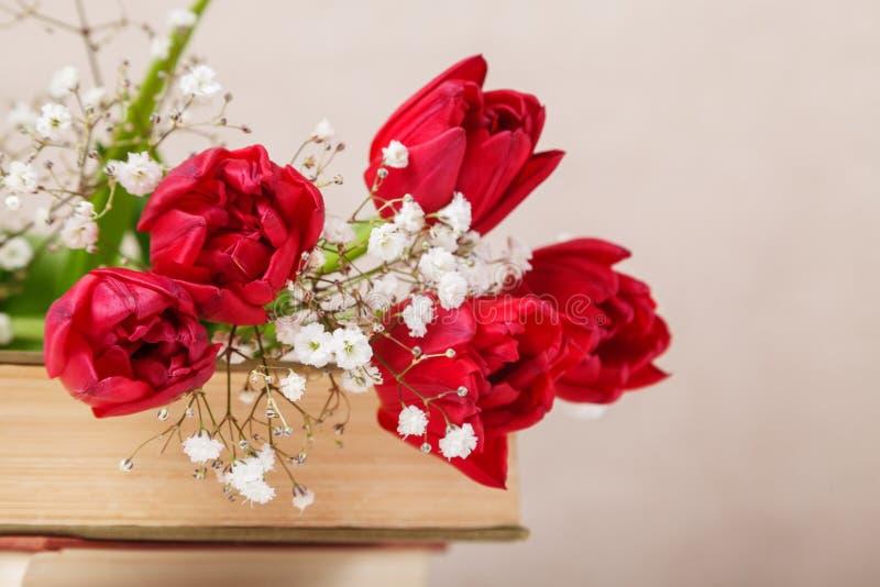 La vie de distillateur de cru avec les tulipes rouges d'un ressort et livres sur un fond beige Le jour de mère, concept du jour d photos libres de droits