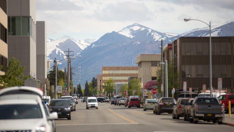 La vie de l'Alaska dans la perspective des montagnes photos libres de droits