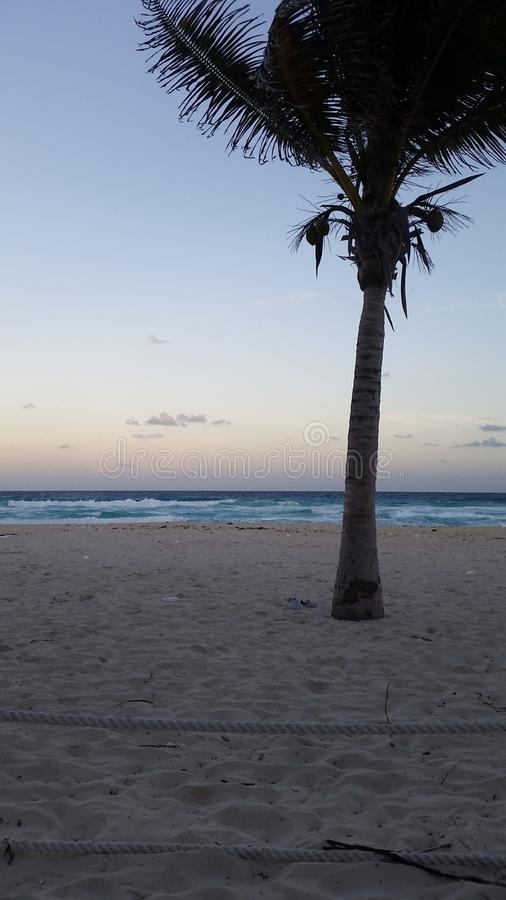 La vie de plage photo libre de droits
