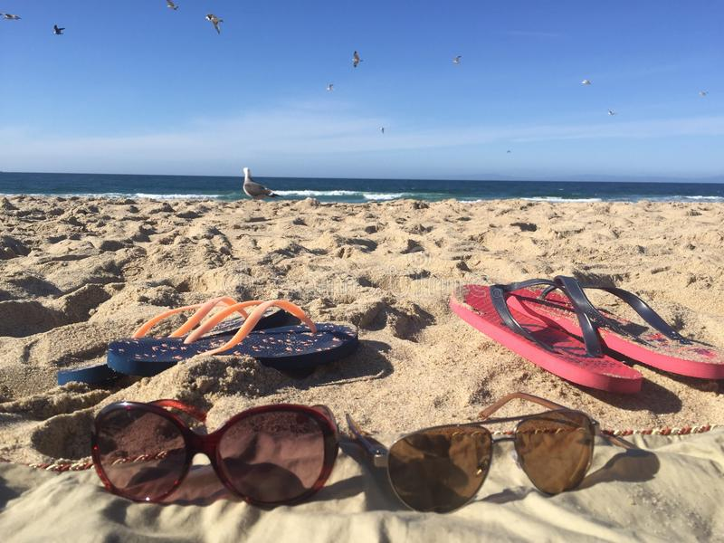 La vie des loisirs de la nature à la plage image libre de droits