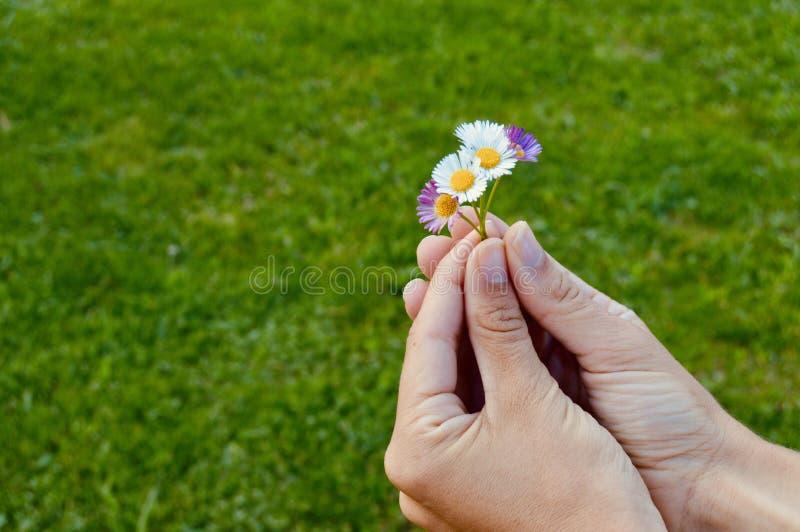 La vie est dans des vos mains image libre de droits