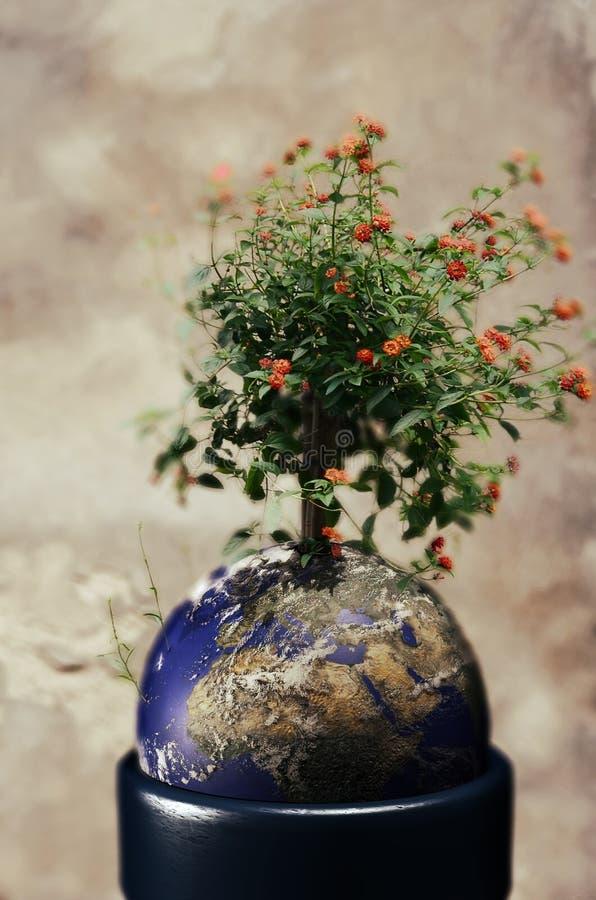 La vie sur terre
