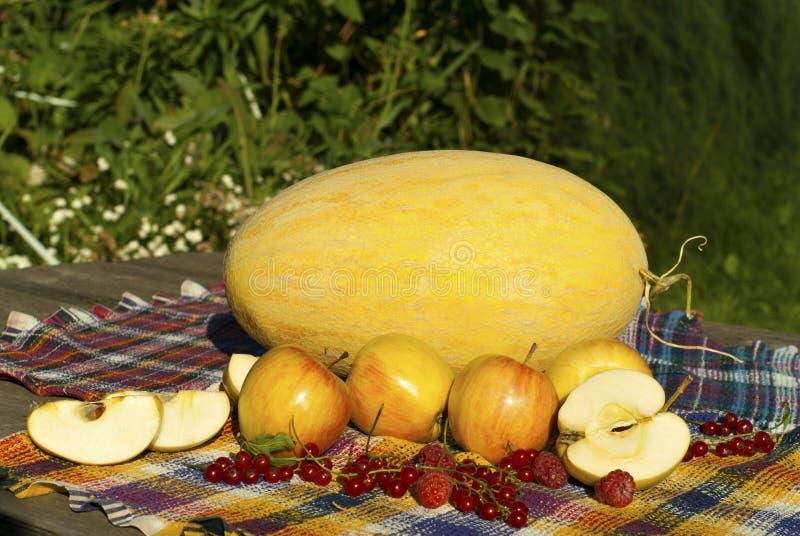 La vie toujours avec le melon, les pommes, les groseilles rouges et les framboises photo stock