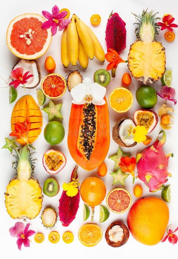 La vie toujours avec les fruits exotiques assortis frais photos libres de droits