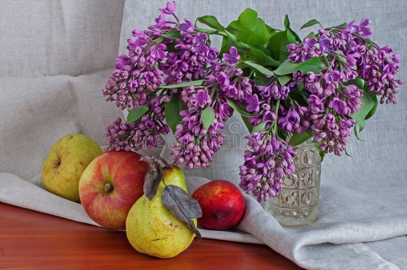 La vie toujours avec les poires et les pommes lilas image stock