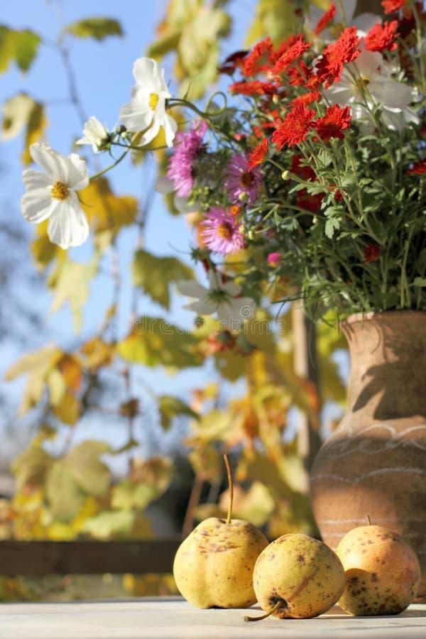 La vie toujours dans des couleurs d'automne images libres de droits