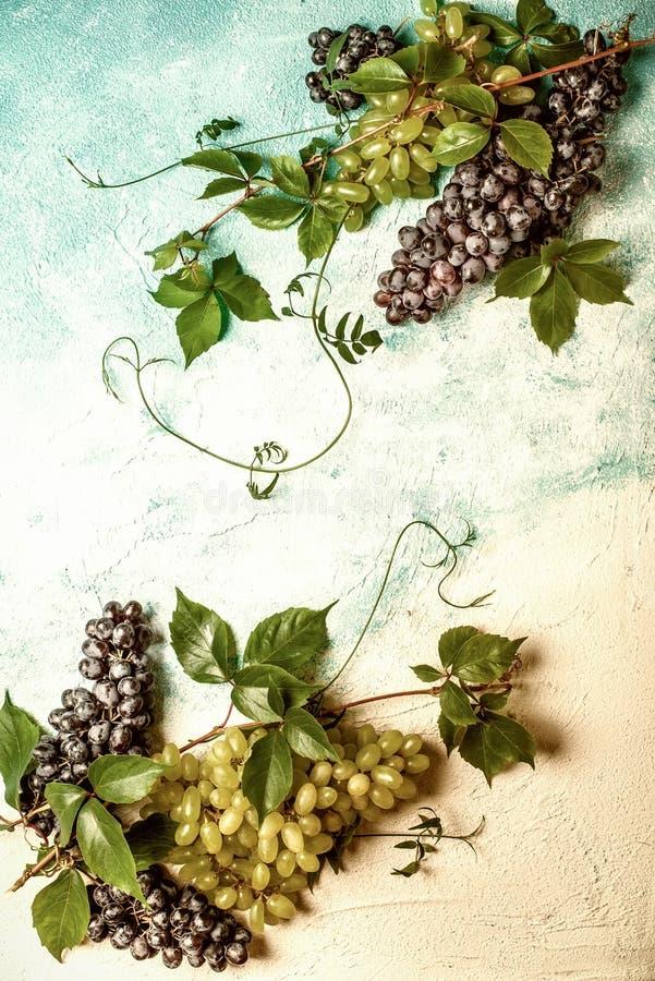 La vie toujours de divers types de raisins photographie stock