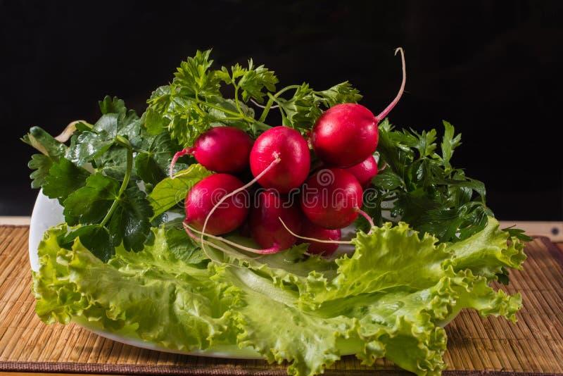 La vie toujours des radis et des verts photographie stock