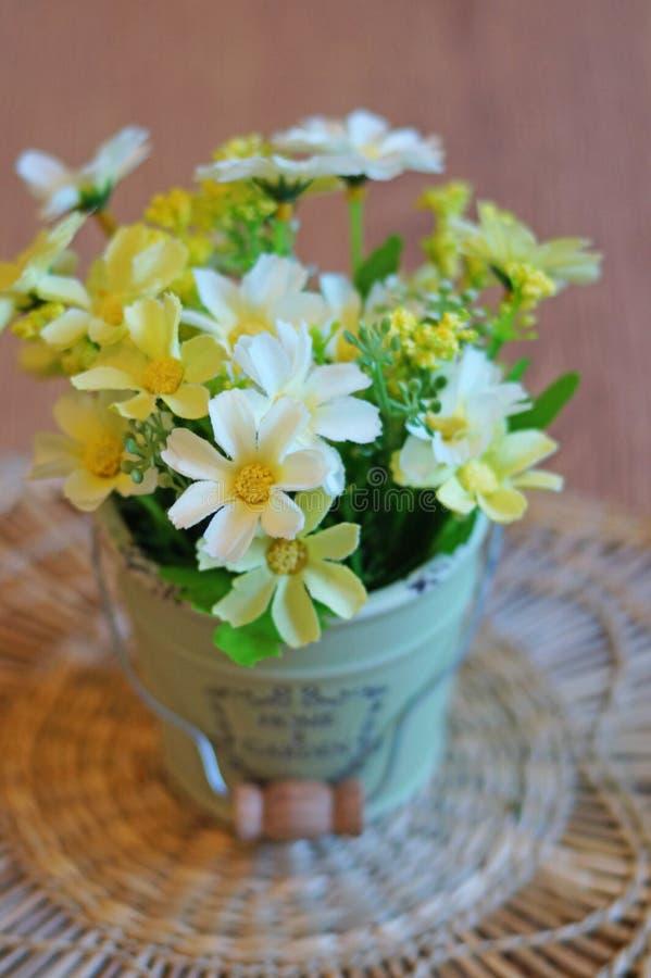 La vie toujours - fleurs dans un pot photo libre de droits