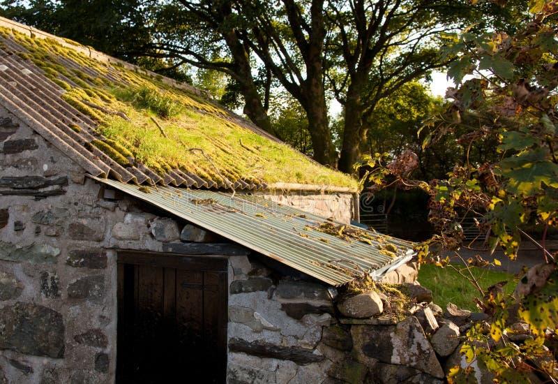 La vieille construction de ferme avec de la mousse a couvert le toit photo stock