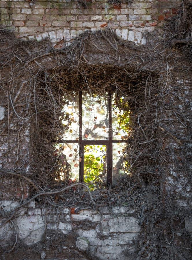 La vieille fenêtre dans le mur de briques ruiné photographie stock libre de droits