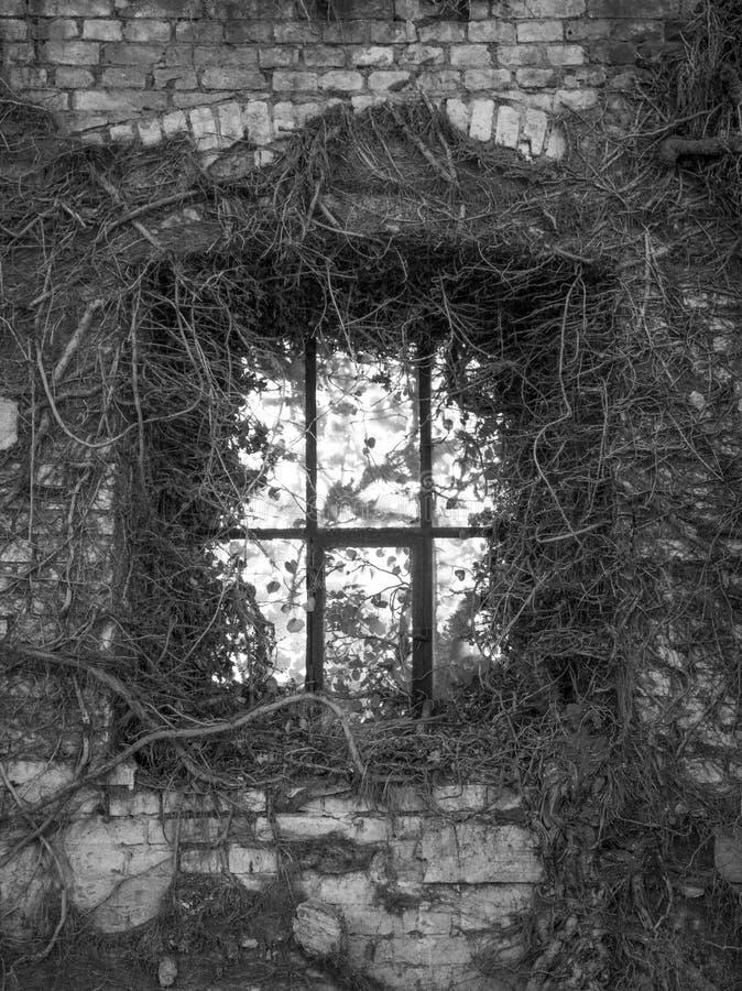 La vieille fenêtre dans le mur de briques ruiné image stock