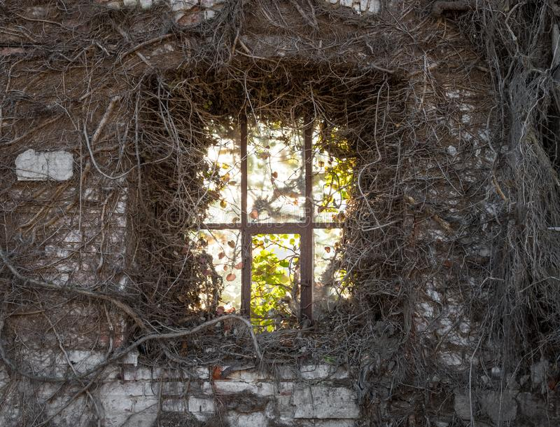 La vieille fenêtre dans le mur de briques ruiné photographie stock
