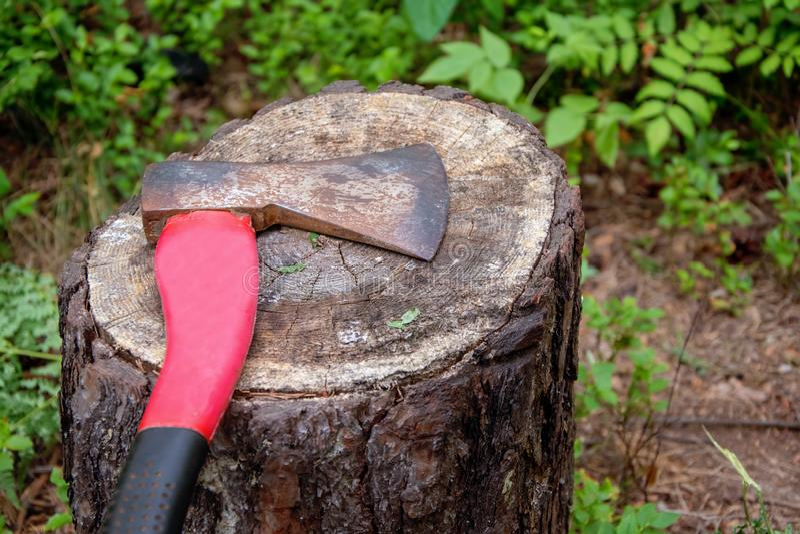 La vieille hache se trouve sur le tronçon d'un arbre abattu, le problème de l'écologie photographie stock libre de droits