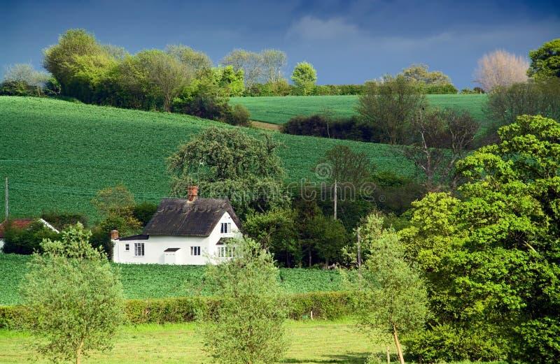 La vieille maison couverte de chaume, terres cultivables de roulis, a tacheté la lumière du soleil images stock