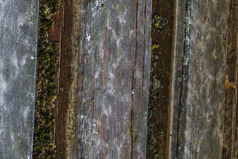 La vieille texture en bois avec les modèles et les fissures naturels sur la surface comme fond Obscurcissez du centre photos libres de droits