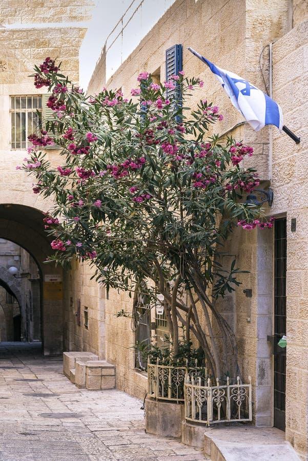 La vieille ville a pavé la rue en cailloutis dans la ville antique Israël de Jérusalem image libre de droits