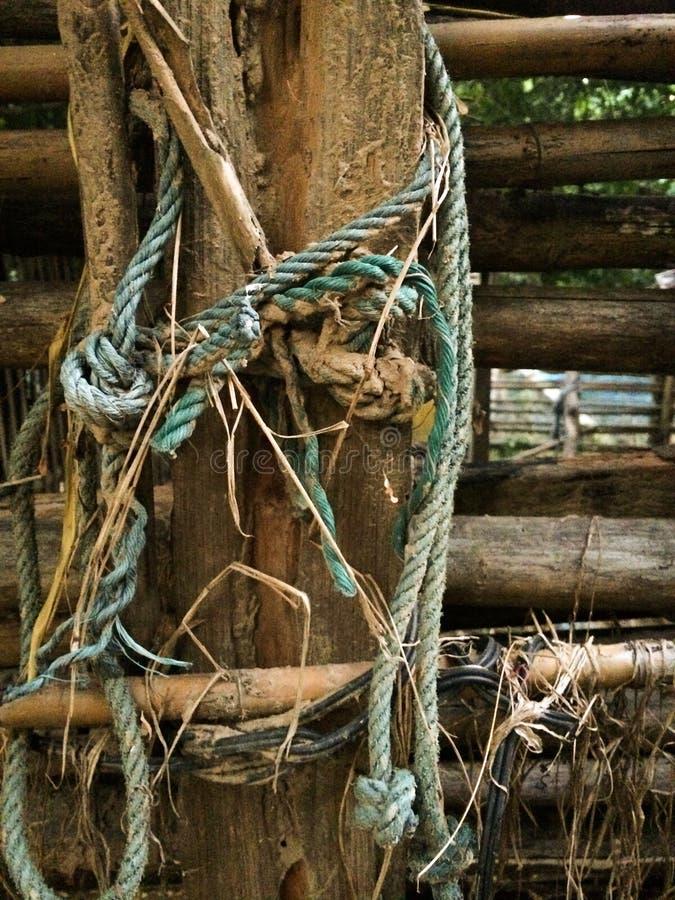 La vieja cuerda verde sujeta la madera fotos de archivo