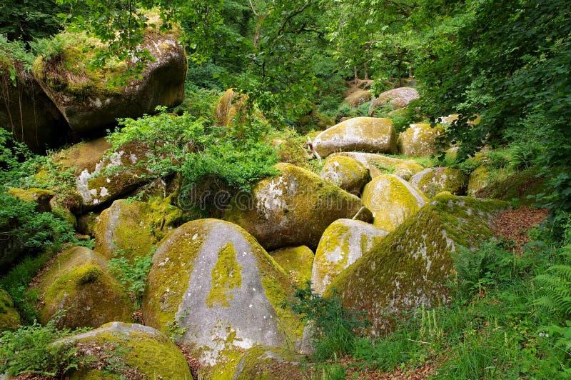 La Vierge de Le Menage de forêt de Huelgoat en Bretagne photos stock