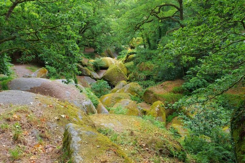 La Vierge de Le Menage de forêt de Huelgoat en Bretagne photos libres de droits